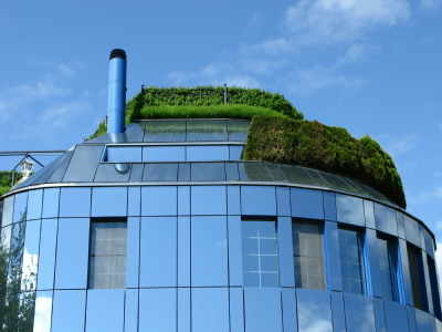 Greening the City