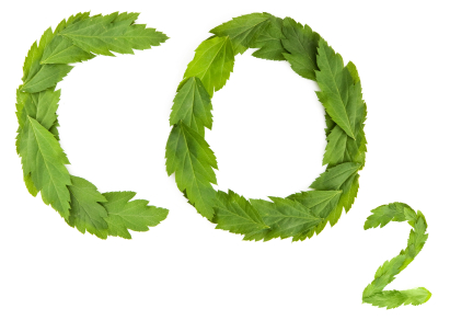 Cooler Smarter: 20 Ways to Cut 20% of your Carbon Emissions in 20 Days