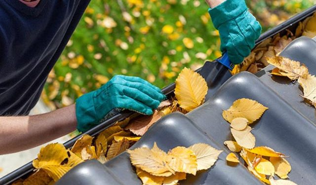 Tips To Get Your Home Ready For Fall